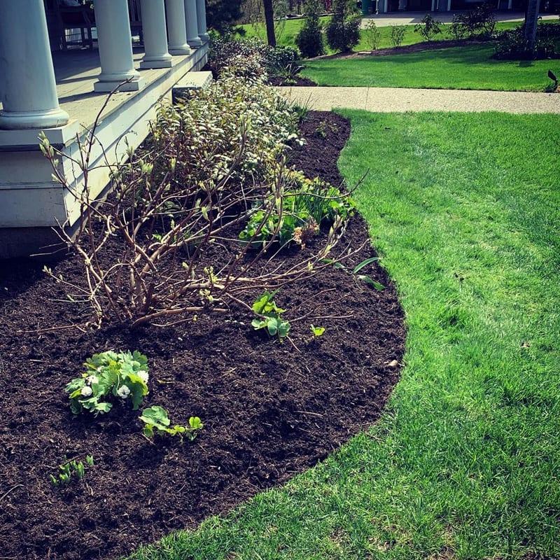 Landscape Planting & Mulching